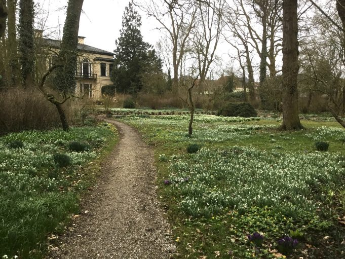 Snowdrops and Snowflakes at Philippusfenne.