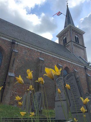'De keniningin fan de stinzeplanten' op 27.04.2016 in Ternaard.  Bostulp.