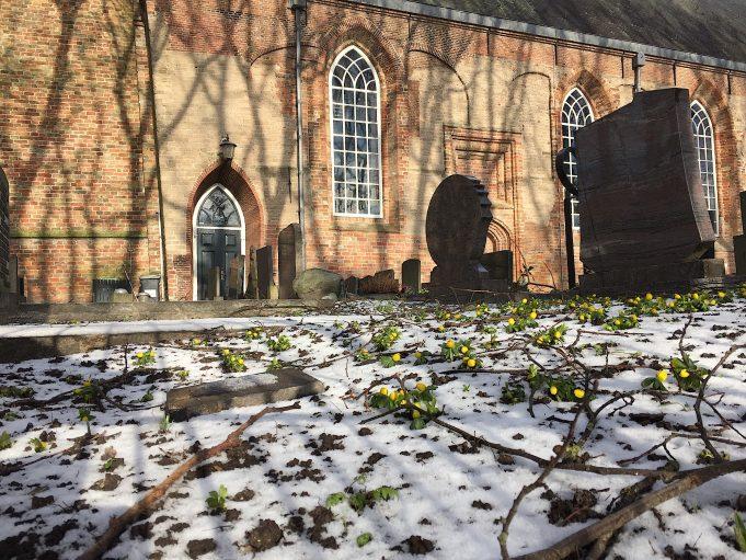 Winterakonieten bij de St. Vituskerk in Stiens op 19 januari 2017.
