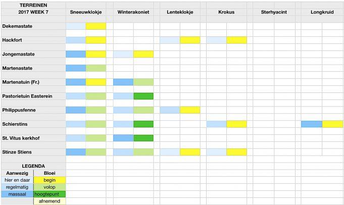Stinzenflora - monitor Kalender 17.07