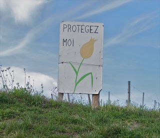 Poligny (Frankrijk) 2011.