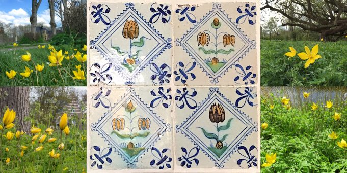Tile panel 17th century Wild tulip