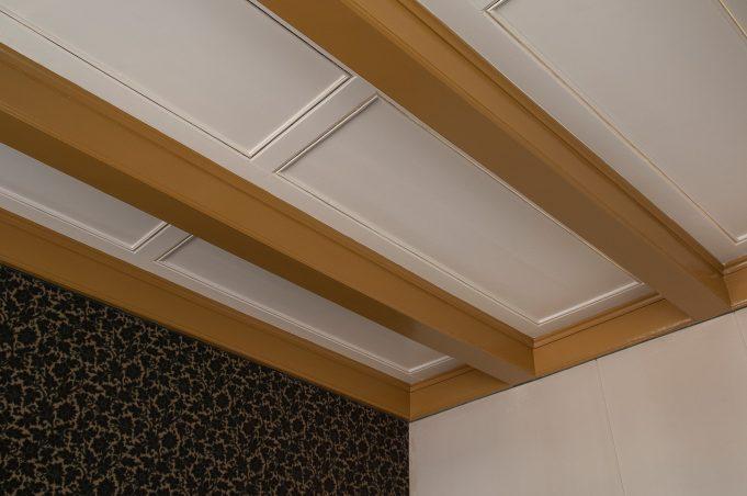 Plafond voormalige spreekkamer, met biesje
