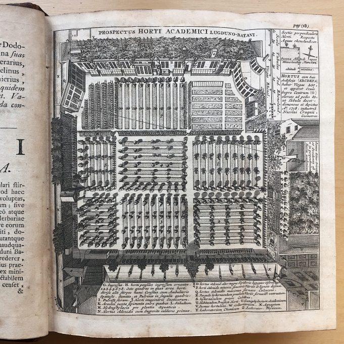Boerhaave Index Plantarum 1720