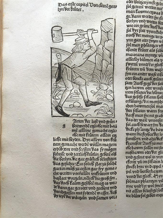 Petrus de Crescentiis, Von cleyne gertlyn der krüter.